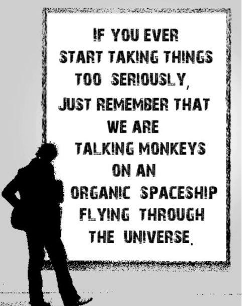 monkeys organic spaceship